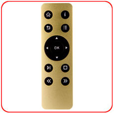 SL-313A Metal Remote Control - Gold